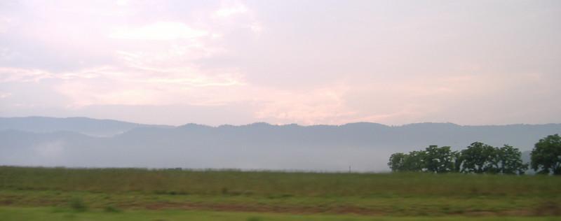 looking west.JPG