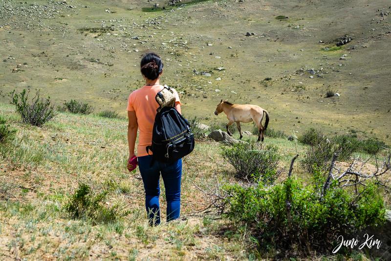 Kustei National Park__6109463-Juno Kim.jpg