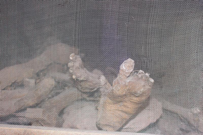 mummy in St Georges church