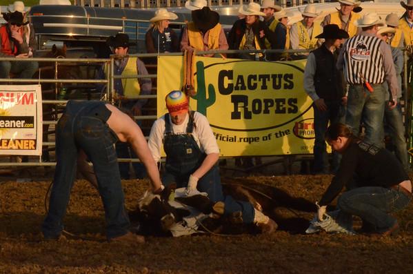 2014 DSU Rodeo - Friday PERFORMANCE