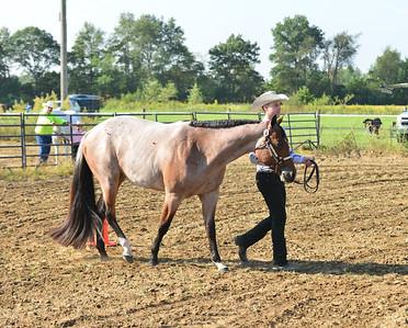 Events 3 & 4   -   Jr/Sr Horse Halter