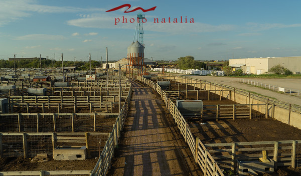 OK Historical Stockyard - 2017