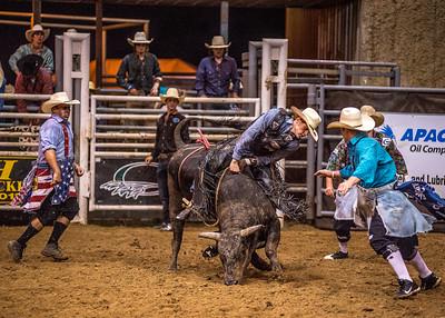 2014 Pasadena Rodeo