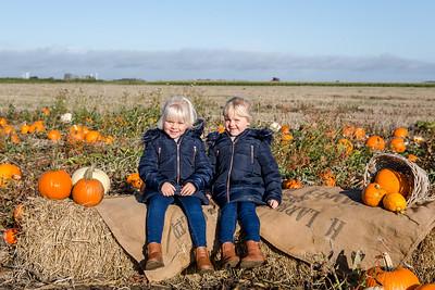 Arabella & Amelia - Pumpkin Mini 2019
