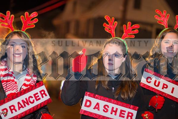 Dworetsky Parade 2014