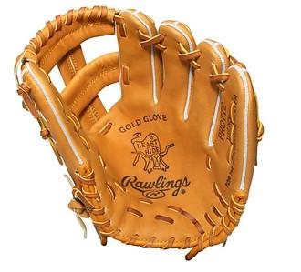 Baseball Gloves Pro Issues