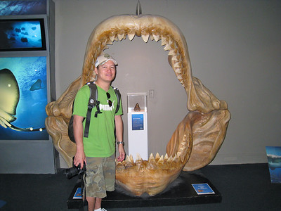 Brian in front of a fossil of a Megalodon, an ancient shark.