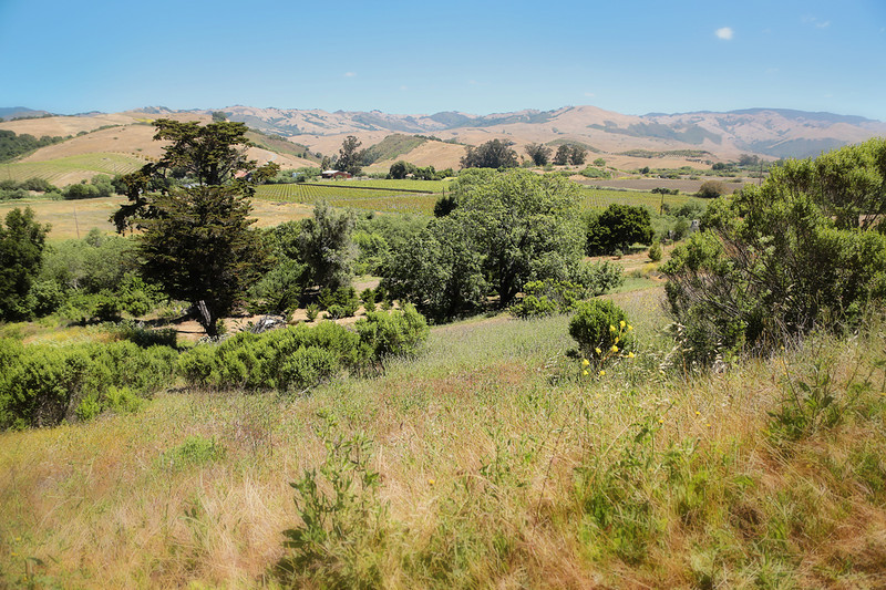 email acreage for sale property in cabria ca a319B1242.jpg
