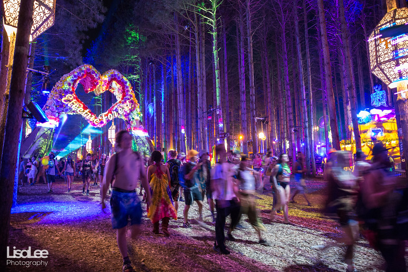 2018-06-30_ElectricForest_20.jpg
