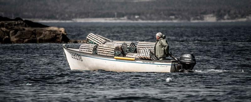 Lobster Fisherman 2