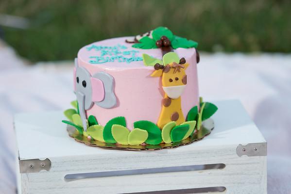 Amy's Cake Smash