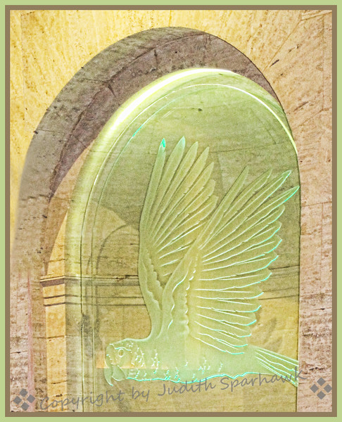 The Flying Parrot - Judith Sparhawk
