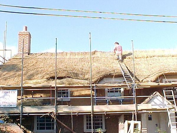 thatched roof guy.jpg
