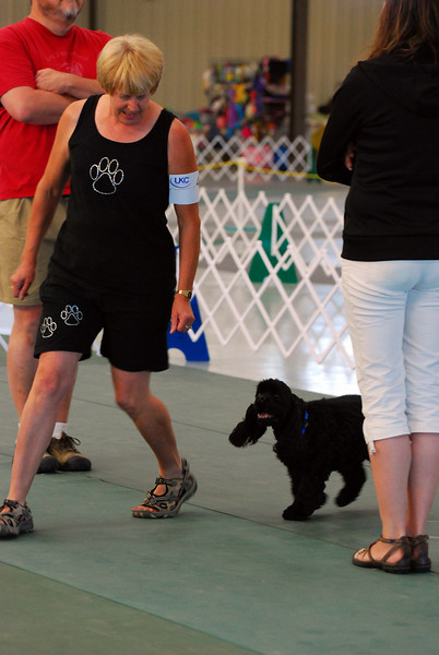 Twin Peak Kennel Club UKC 2010