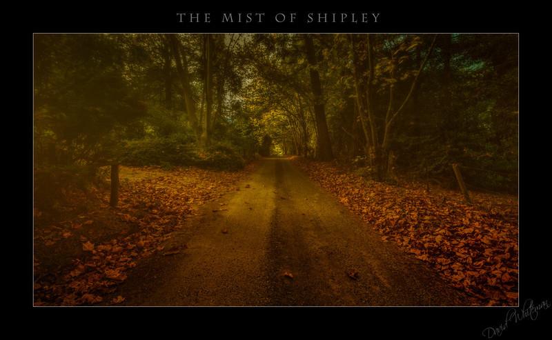 The Mist of Shipley