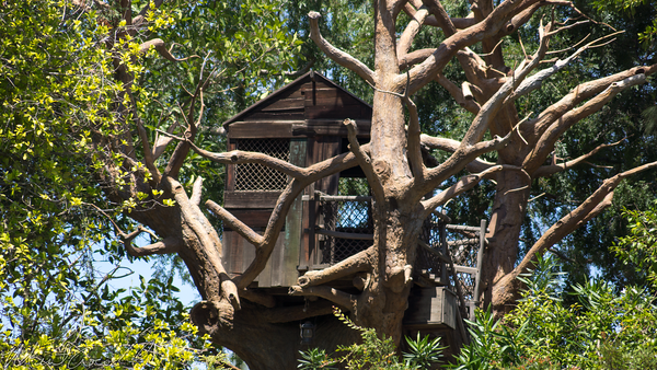 Disneyland Resort, Disneyland, Frontierland, Tom, Sawyer, Island, Tree, House