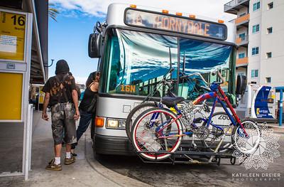 Bus Stop Dreams
