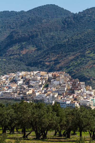 View of townscape with lush green mountain in background - Morocco