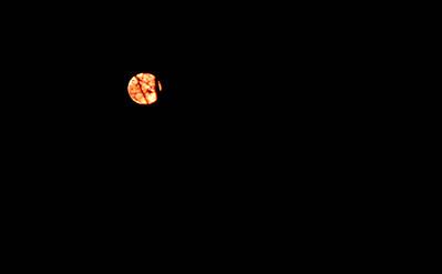 2011 05 17:  Moon, Vb Cupcakes, UMD Sculpture