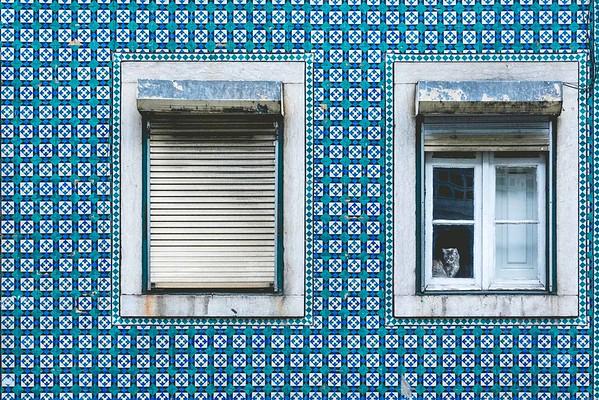 Portugal   Lisbon & Porto