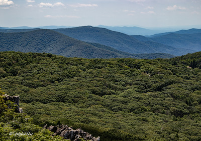 Blue Ridge and Shenandoah