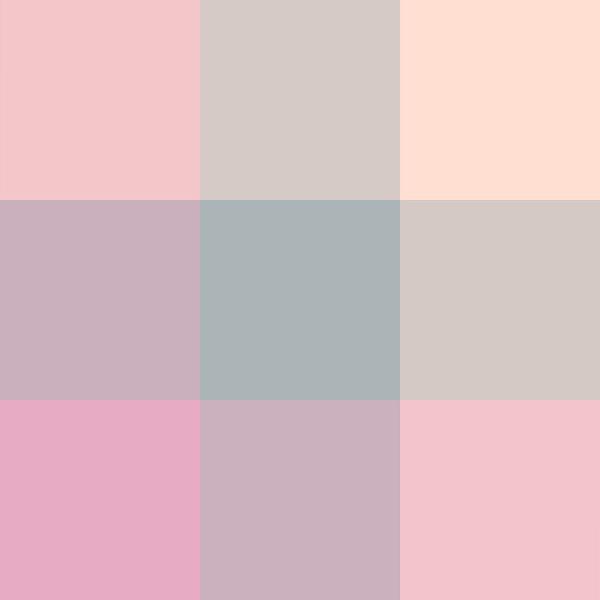 Pinkie Plaid.jpg