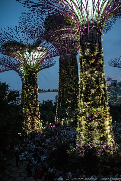 2018-07-18_FunWithFamily@GardensByTheBay_SingaporeSG_59.JPG