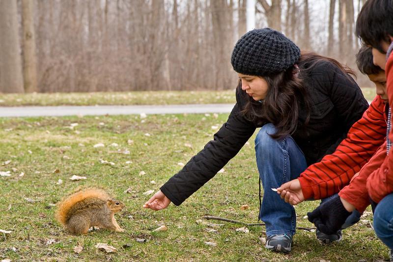 Feeding a squirrel and Niagara Falls State Park, NY