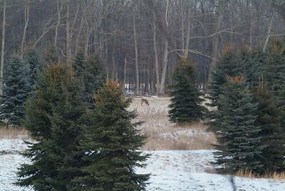 Winter Drive 2010 part i