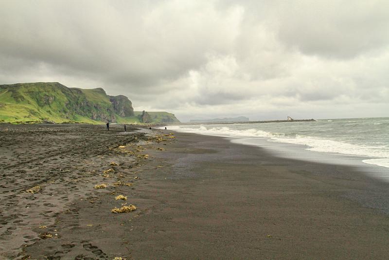 Beach in Vik.