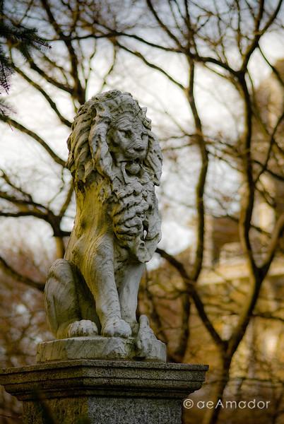 Cylburn Arboretum-aeamador-0201.jpg