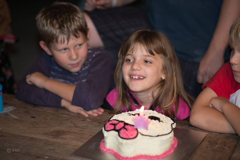 Emma's 7th Birthday