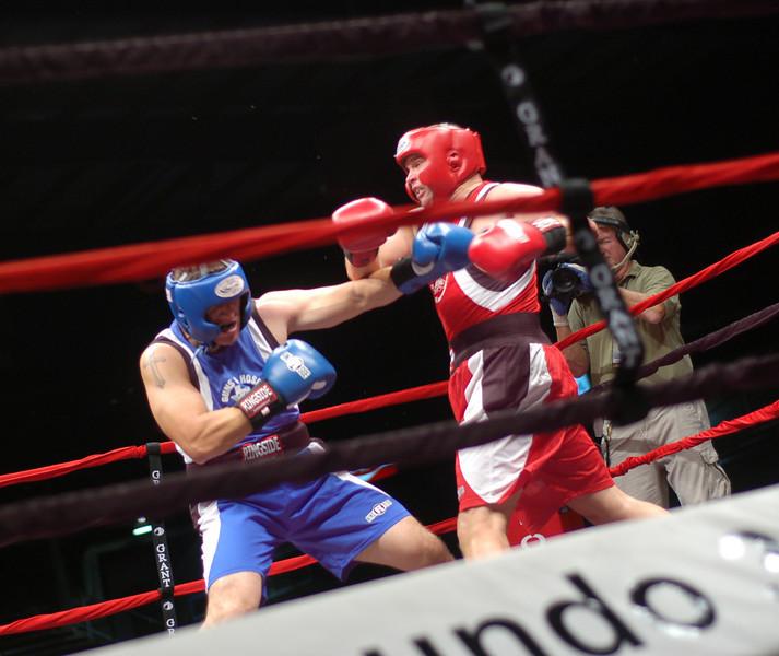 boxer11.JPG