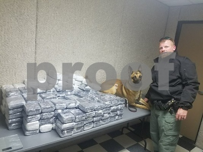 200-pounds-of-marijuana-seized-in-traffic-stop-near-canton