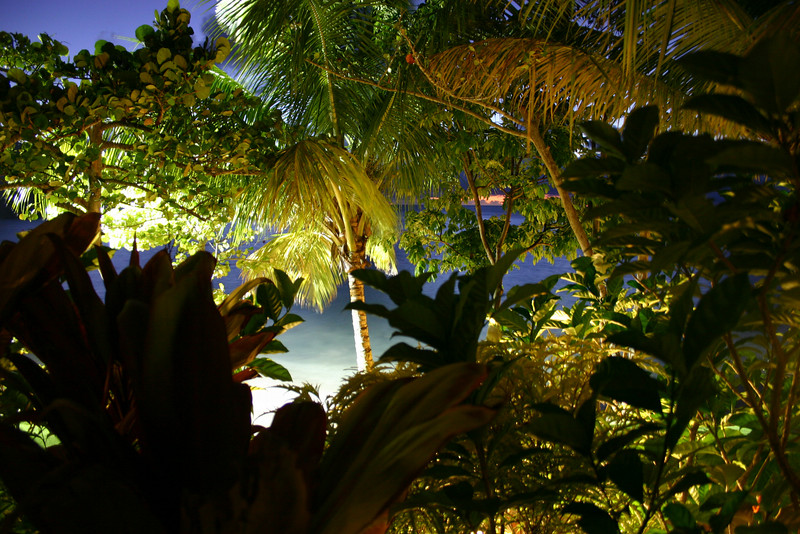 St Lucia 2004 118