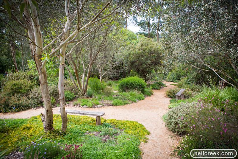 creek-131027-119.jpg