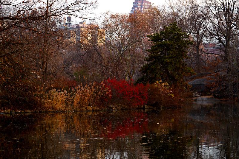 Central Park Boat Lake 2.jpg