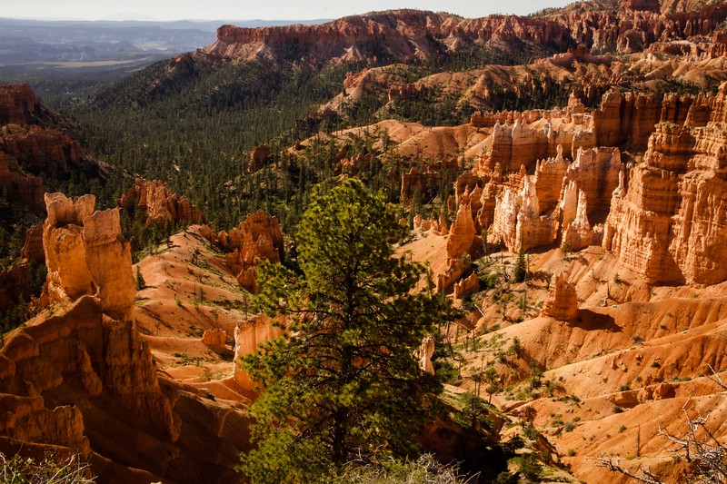Bryce Canyon 12.jpg