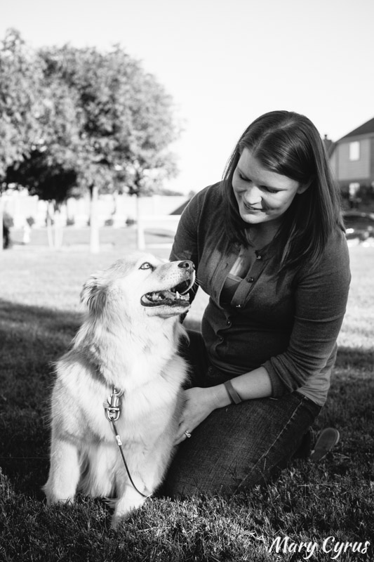 Husky Mix with Family | Dog Portrait by Mary Cyrus Photography in Dallas, Texas