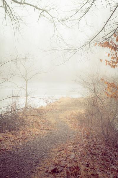 Foggy Path at Trewellyn Preserve