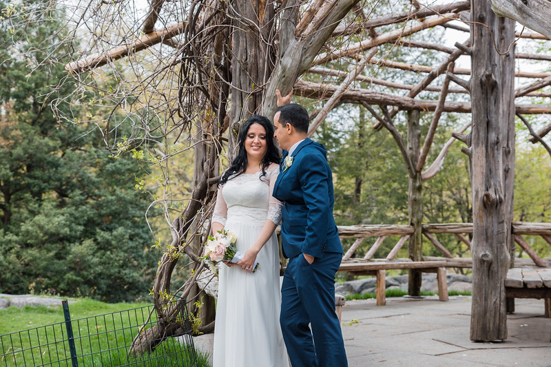 Central Park Wedding - Diana & Allen (179).jpg