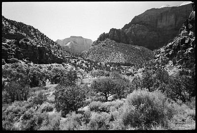 Las Vegas, Hoover Dam, &  Zion National Park