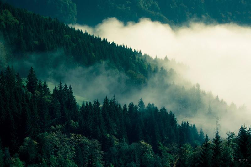 im Tal hängt noch stellenweise der Nebel