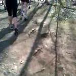 Loop 2009 - RH Video