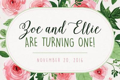 Zoe & Ellie 11/20/16
