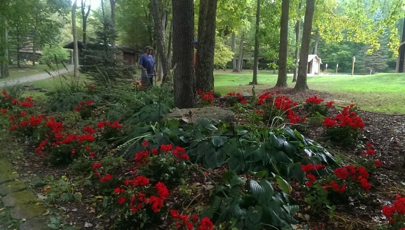 Tending the Gardens