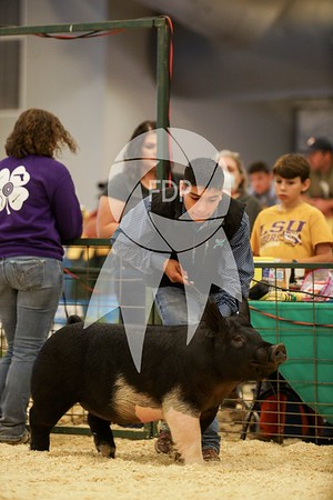 Cross Gilt Champion Drive