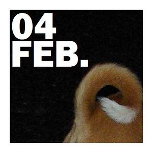 04 FEBRUARY