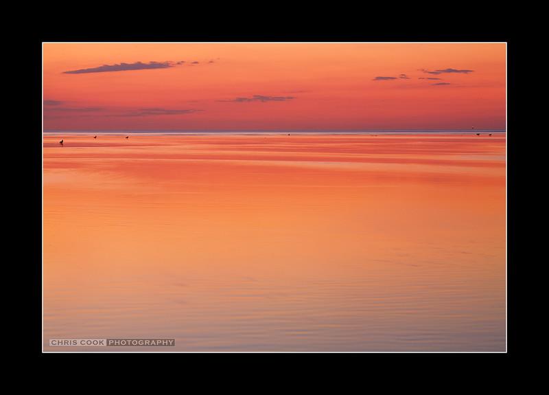 tidal-colors.jpg