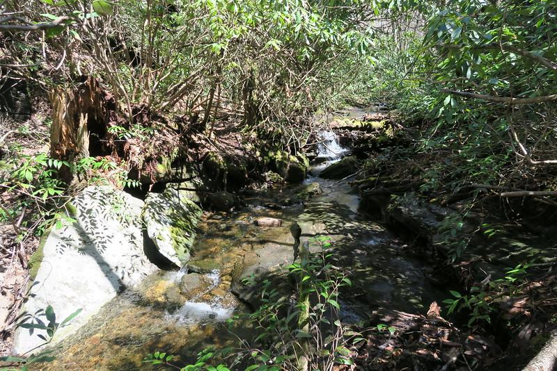 Little Green Creek - 3,730'